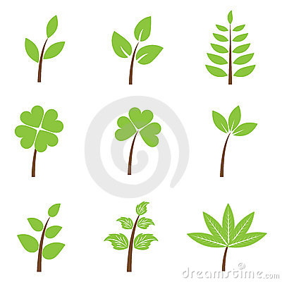 Green leaves - set