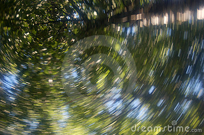 Green leaves and sky abstract