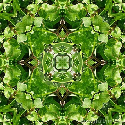 Green Leaves Tile Pattern Background 5