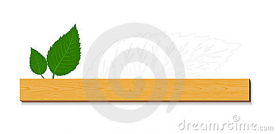 Green leaves with wood