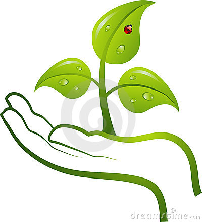 Green life in hand,