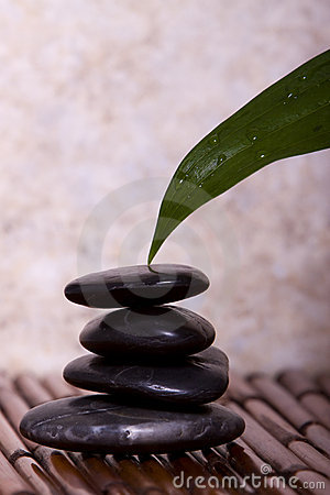 Green lily leaf touching balanced pebble rocks