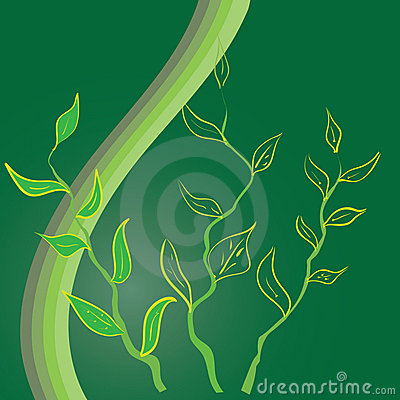 Green limb