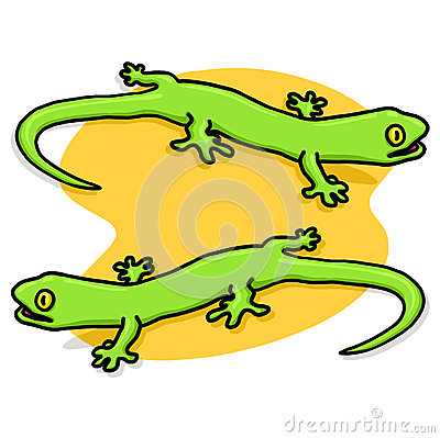Lizards illustration