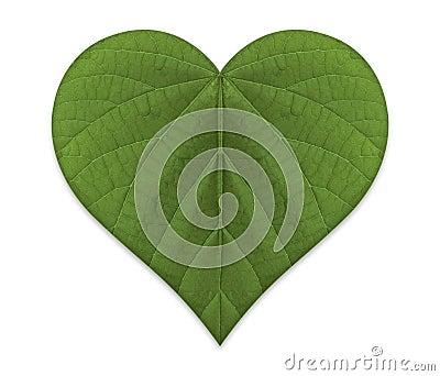 Green Love