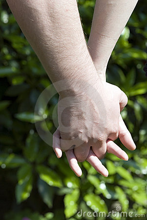 Green love - holding hands couple