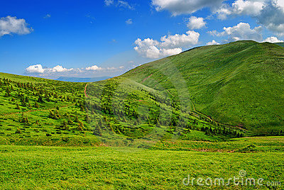 Green lush mountain valley with pathway