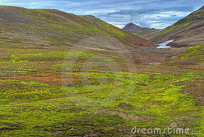 Green lush valley, Iceland