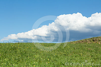 Green meadow with cumulus clouds