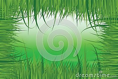 Green meadow in fresh grass frame