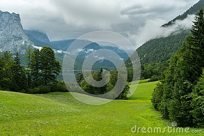 Green meadow in the alps on a cloudy day Stock Photo