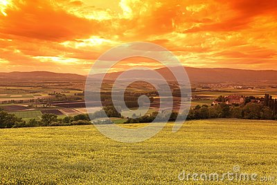 Green Meadow Under Sunset Sky Royalty Free Stock Images - Image: 28107859