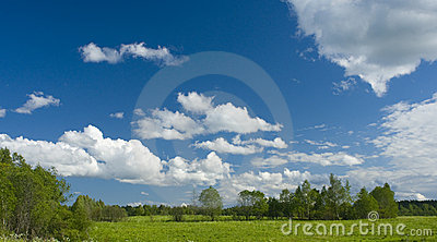 Green meadow and white clouds II