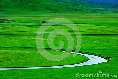 Green meadow with winding creek