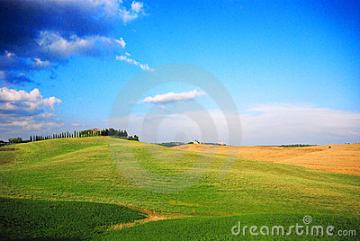 Green Meadows Stock Photography - Image: 4221592