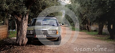 Green Mercedes Benz W123 Parked Near Tree Free Public Domain Cc0 Image