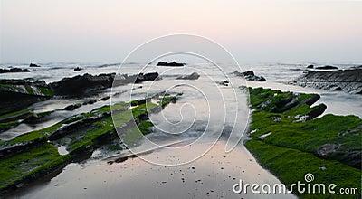 Green moss covered rocks in Barrika beach