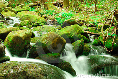 Green mossy rocks with waterfall