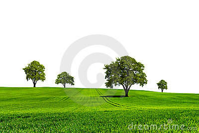 Green nature ecology