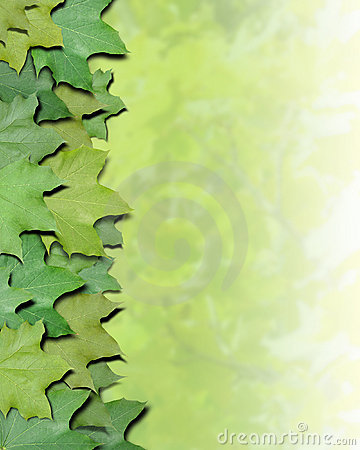 Free Green Nature Leaves Border Royalty Free Stock Images - 17096199