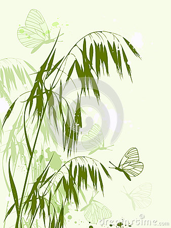 Green oat and butterflies