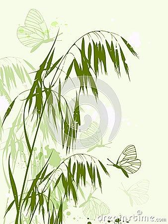 Green oat and butterflies