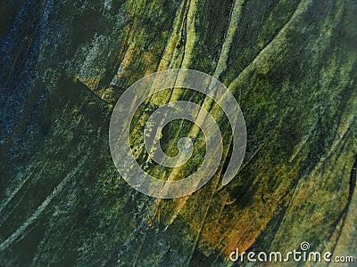 Green oil paint texture Stock Photo