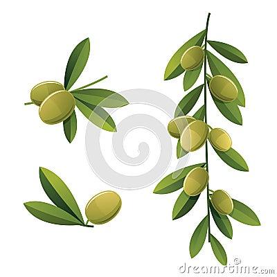 Green olive set