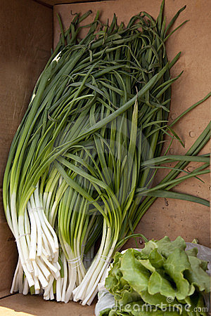 Green Onion and salad  street market