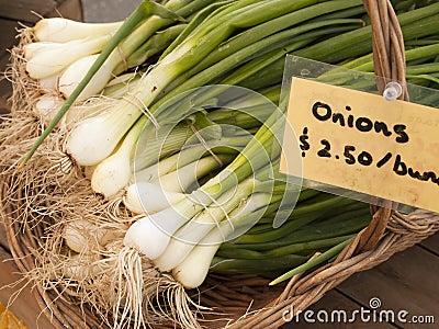 Green Onions At Market