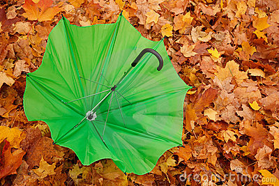Green opened umbrella lies against autumn leaves