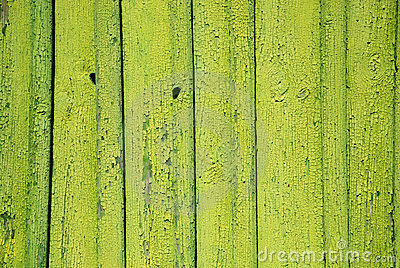 Green Painted Background Stock Photo - Image: 20917520