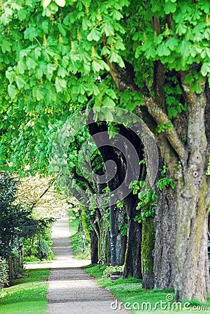 Green Path,Canada