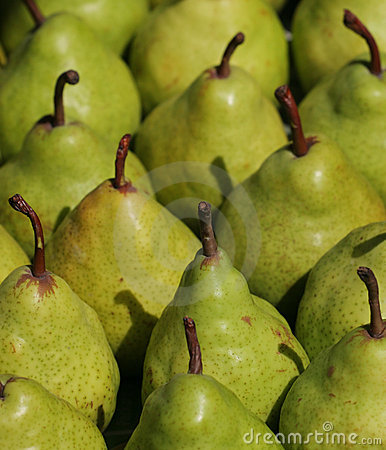 Free Green Pears Royalty Free Stock Image - 5418526
