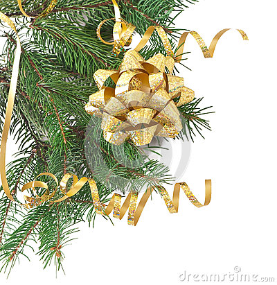 Green pine branch with gold bow