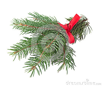 Green pine branch with red bow