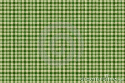 Green plaid gingham background