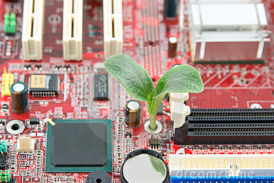 Green plant growing through electronic circuit boa