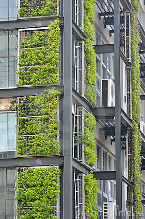 Green plant and modern building