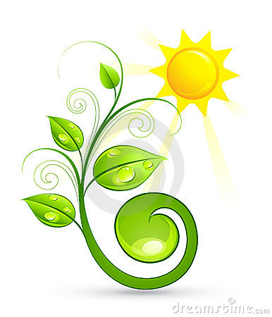 Green plant and sun