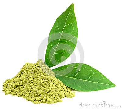 Free Green Powder Matcha Tea Stock Photo - 25144870