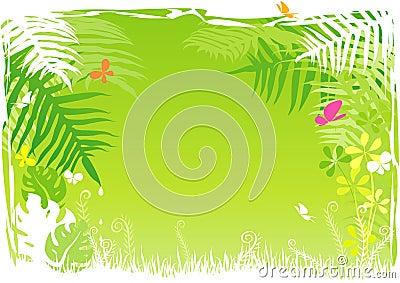 Green rainforest background