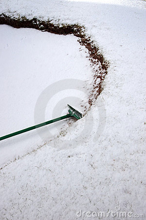 Free Green Rake In A Snow Covered Bunker Stock Photo - 22127830