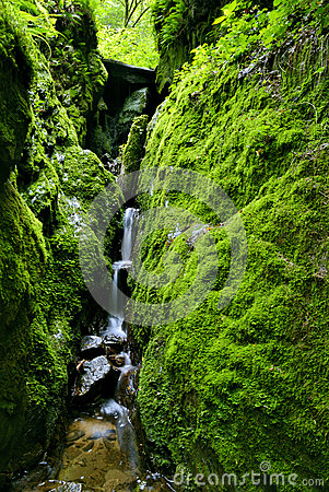 Green Ravine and Waterfall