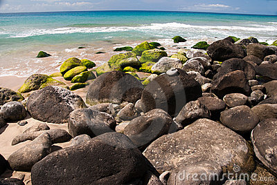 Green Rocks on a Tropical Beach
