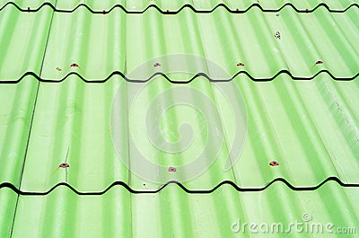 Green roof texture