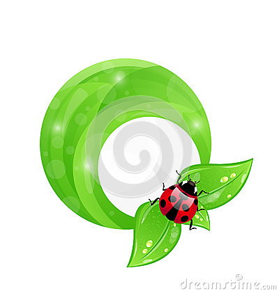 Green round frame with leaf elements and ladybug