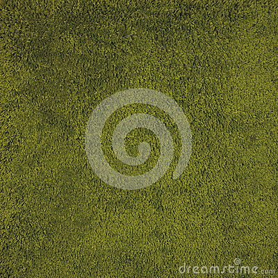 Green rug background