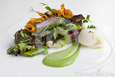 Green Salad with Fennel Puree