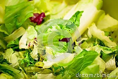 Green salad macro